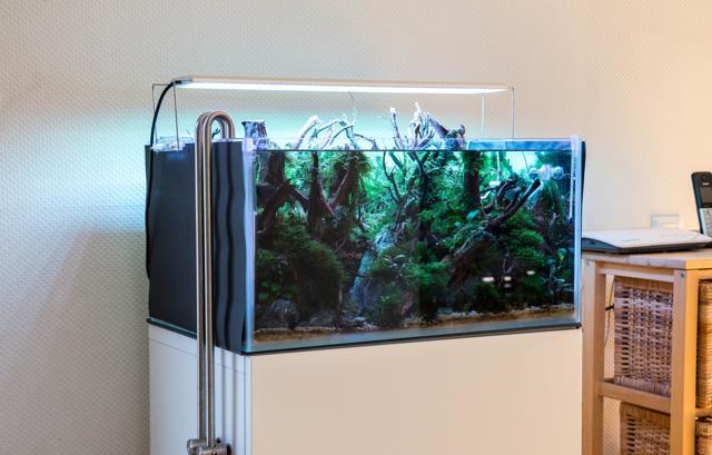 Aquarium LED befestigen Aquascaping Wiki | Aquasabi