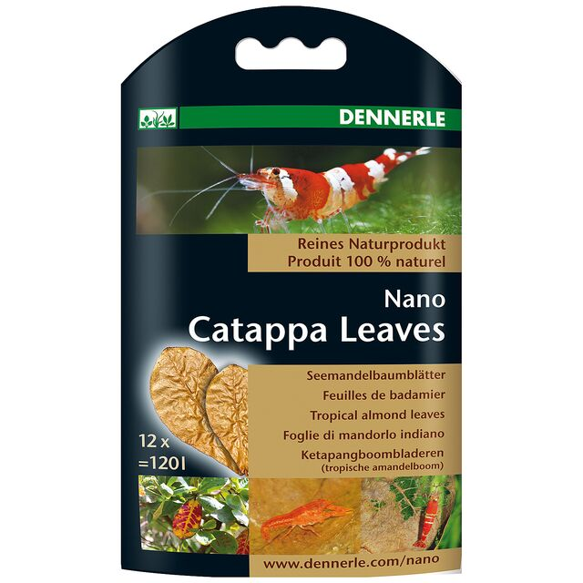 Dennerle - Nano Catappa Leaves - 12x