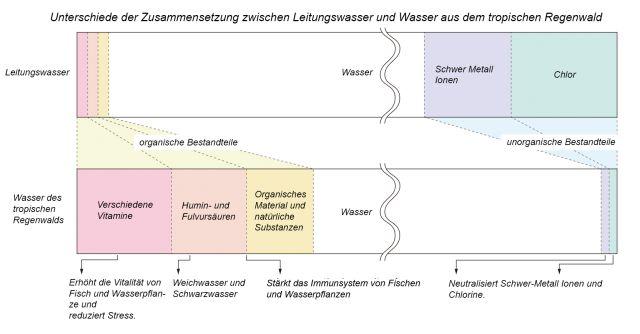 Biologisches System der Gewässer des Regenwaldes