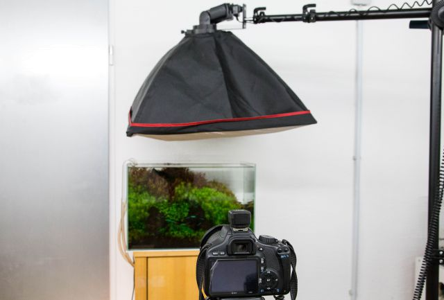 Setup with unbound flash and softbox.