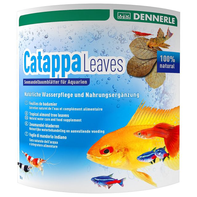 Dennerle - Catappa Leaves - 10x