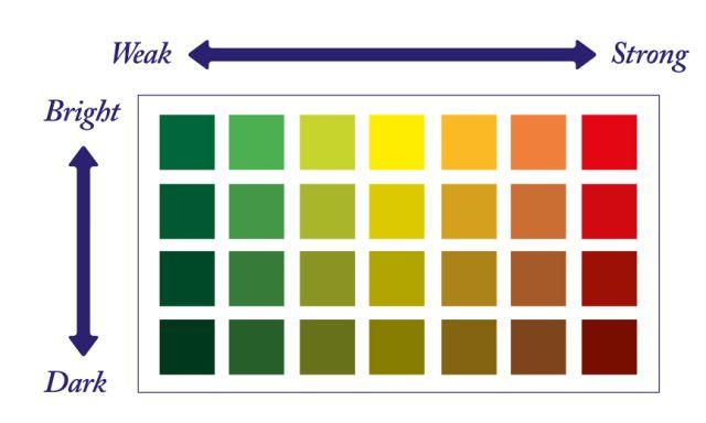 ADA Farbeindrücke