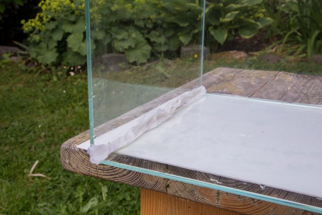 Aquariumecke mit Chlor reinigen