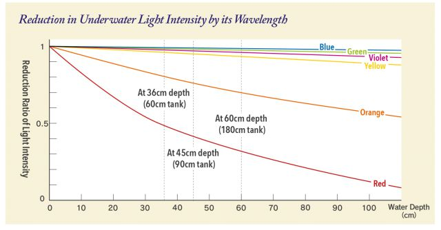 ADA - light intensity diagram