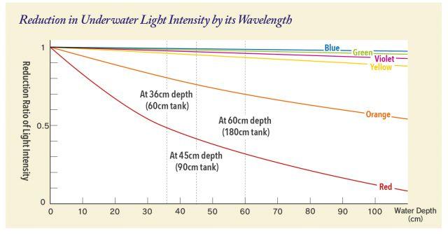 ADA - light intensity diagram