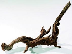 ADA Horn Wood