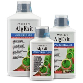 Easy Life - AlgExit