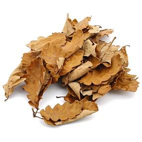 Eichenblätter - Braun