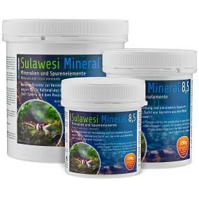 SaltyShrimp - Sulawesi Mineral - 8,5