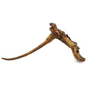 Gnarly Driftwood - Driftwood - L - 26