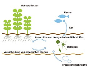 ADA Substratsystem