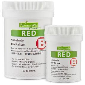 Borneo Wild - Red (B)