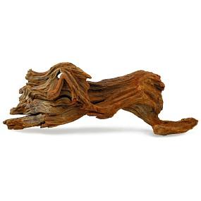Gnarly Driftwood - Driftwood - M - 01