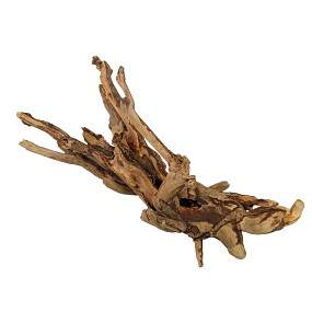 Talawa Wood
