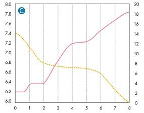 ADA leeres Becken Chart